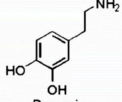 Roken; het verband tussen Dopamine en Roken