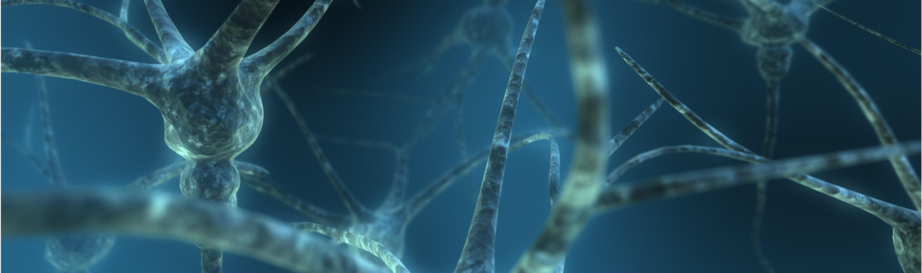 neuron-wallpaper